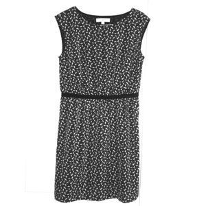 Perfect little dress for work or play from LOFT